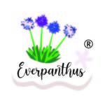Everpanthus logo_grijs-achtergrond